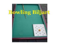 Bowling biljart